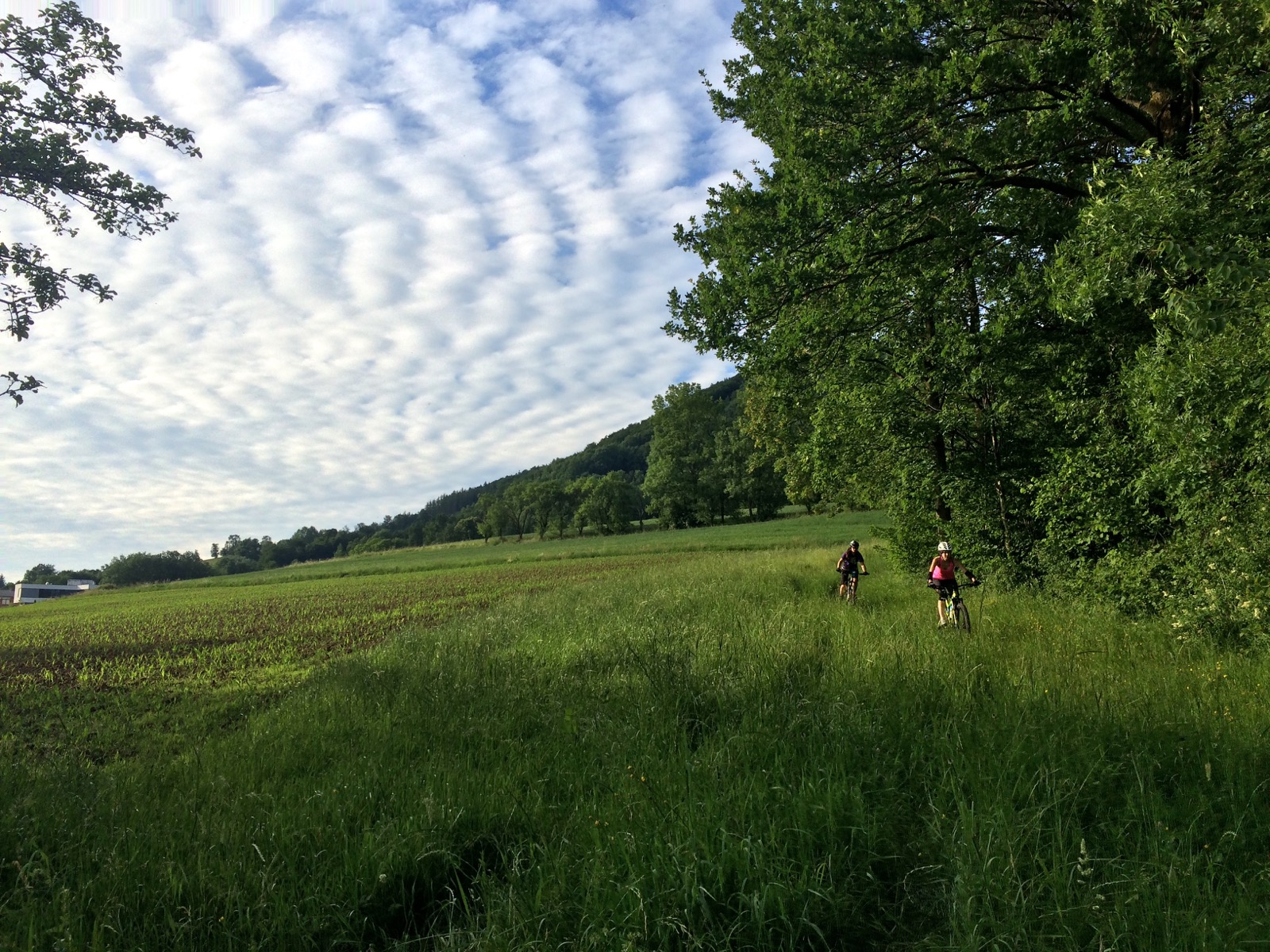 Mountainbike Kirchdorf